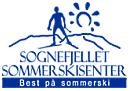 Sognefjellet  Sommarskisenter